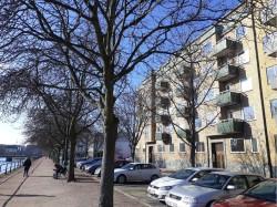 20180222 Södra promenaden 7 small